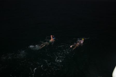 2swimmers.jpg