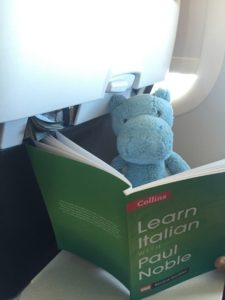 At least One hippo used the time on the plane usefully.